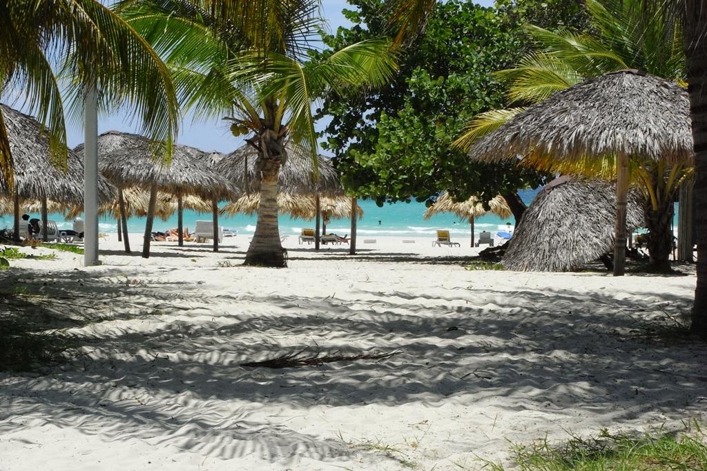 Kuba´s wunderschöner weißer Sandstrand mit Palmen, Sonnenschirmen und Liegen.